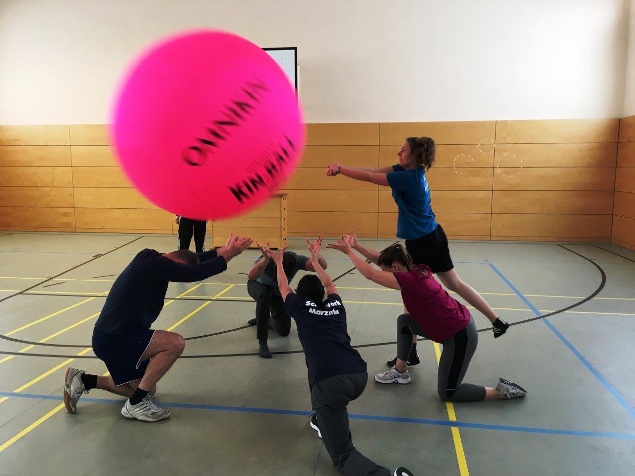 Kin-Ball1